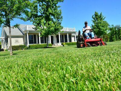 Lawn-Care-Maintenance-GTA