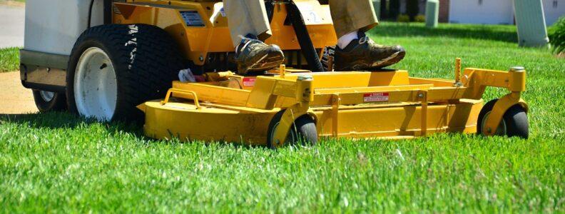 Lawn Care Portfolio